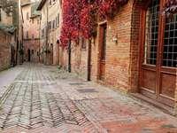 Straat in Certaldo (Italië)
