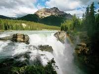Athabasca Falls (Canada)