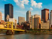 Panorama of Pittsburgh with the bridge (USA)