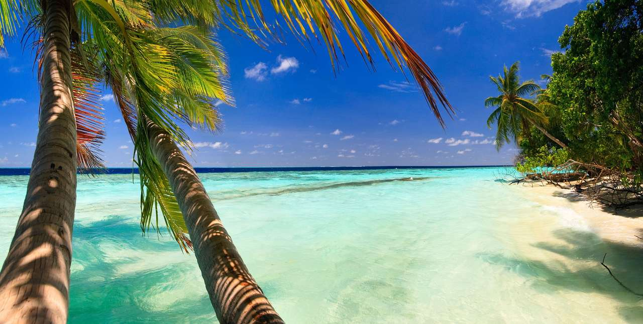 Paradise beach with white sand (Maldives) - The Maldives is an island state located in the Indian Ocean, south-west of the coast of India. Its capital is located on the island of Malé. The inhabitants of the archipelago derive income primarily (11×6)