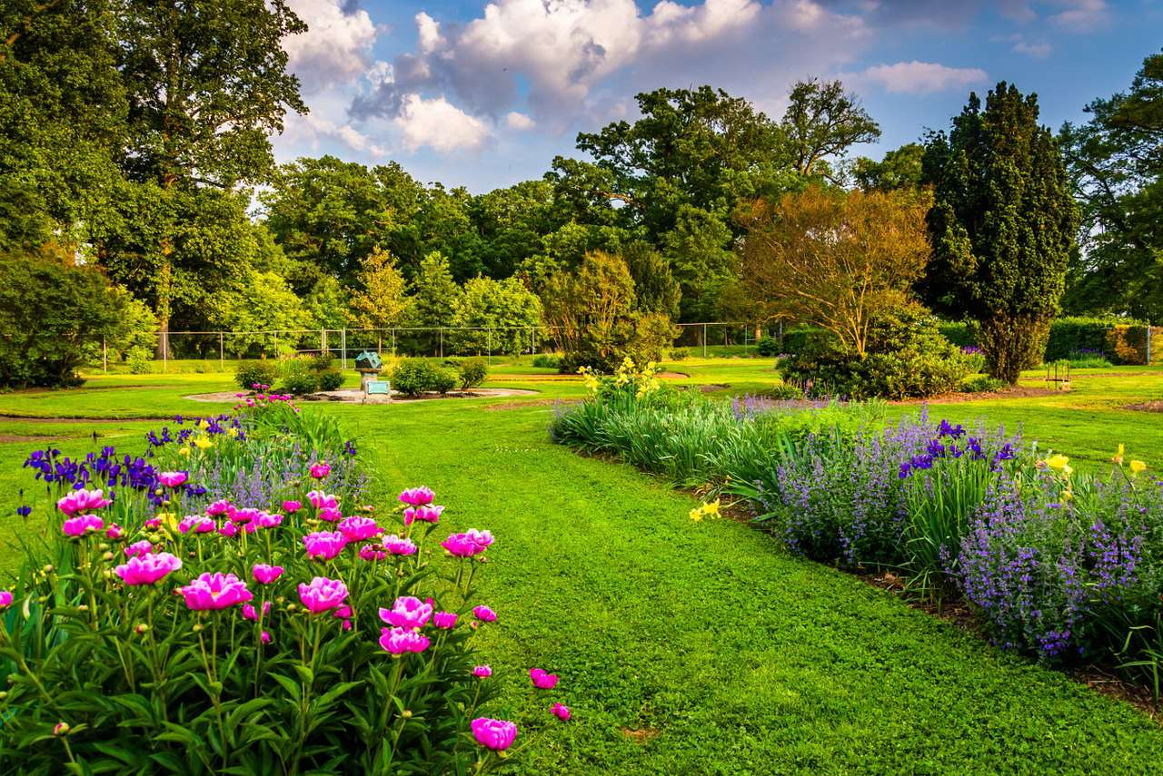 Colorful flowers in Druid Hill Park in Baltimore (USA) - Druid Hill Park in Baltimore is one of the three oldest urban parks in the United States, it was founded in 1860 after the oldest park in Philadelphia and the famous Central Park in New York. Original (9×7)