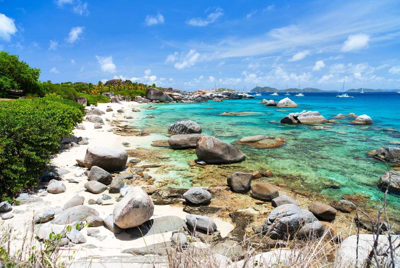 Spiaggia caraibica sull'isola di Virgin Gorda (Regno Unito) puzzle da foto