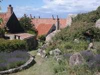 Garden by historic houses on Christiansø (Denmark)