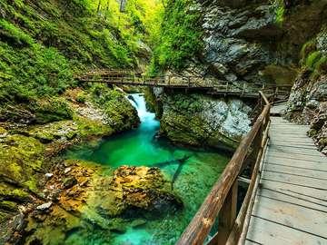 Vintgar Gorge (Slovenia)