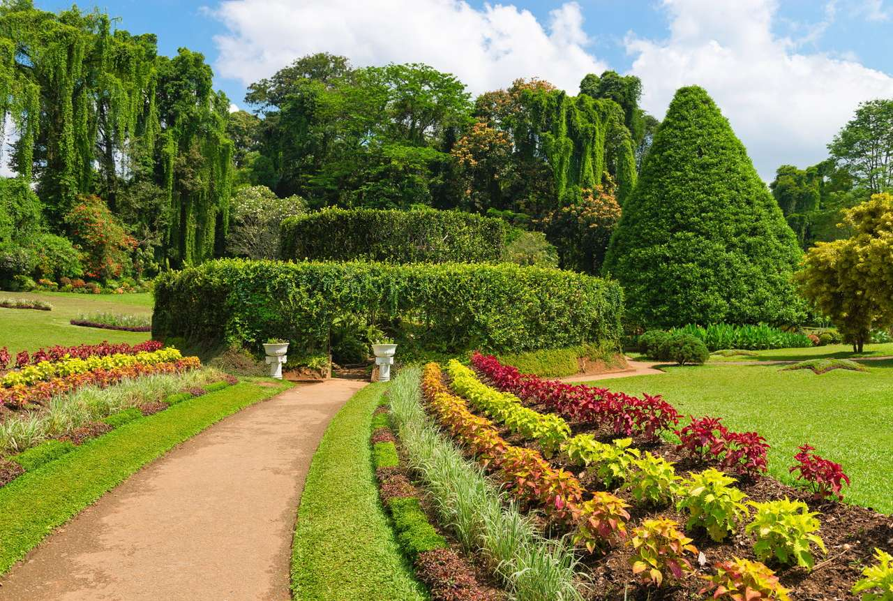 Royal Botanic Gardens in Peradeniya (Sri Lanka) - Peradeniya is located in the suburbs of Kandy, the capital of one of Sri Lanka's provinces. There is a university and an impressive botanic garden, founded by the British in 1824, in the place of the (12×7)