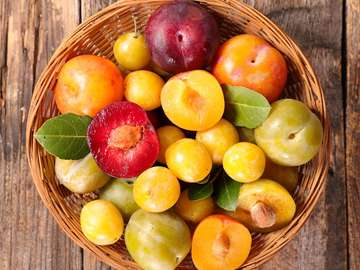 Greengage and mirabelle plums