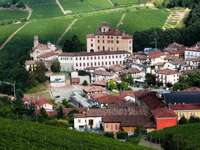 Village of Barolo surrounded by vineyards (Italy)