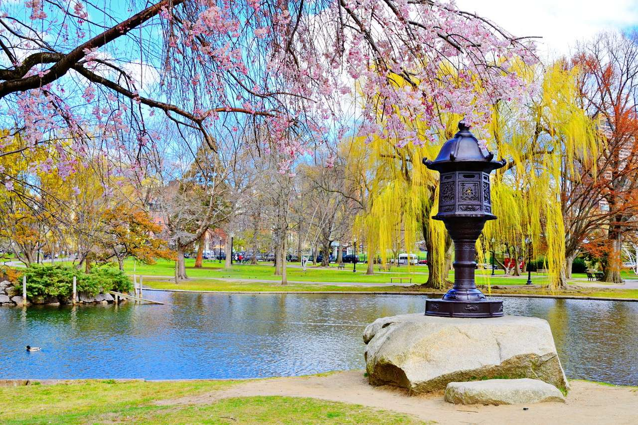 Boston Public Garden (USA) - Boston is the capital of Massachusetts and a large city founded in 1630, it is located on the East Coast. Boston Public Garden, a large park that is the first urban botanical garden in the United Stat (13×9)