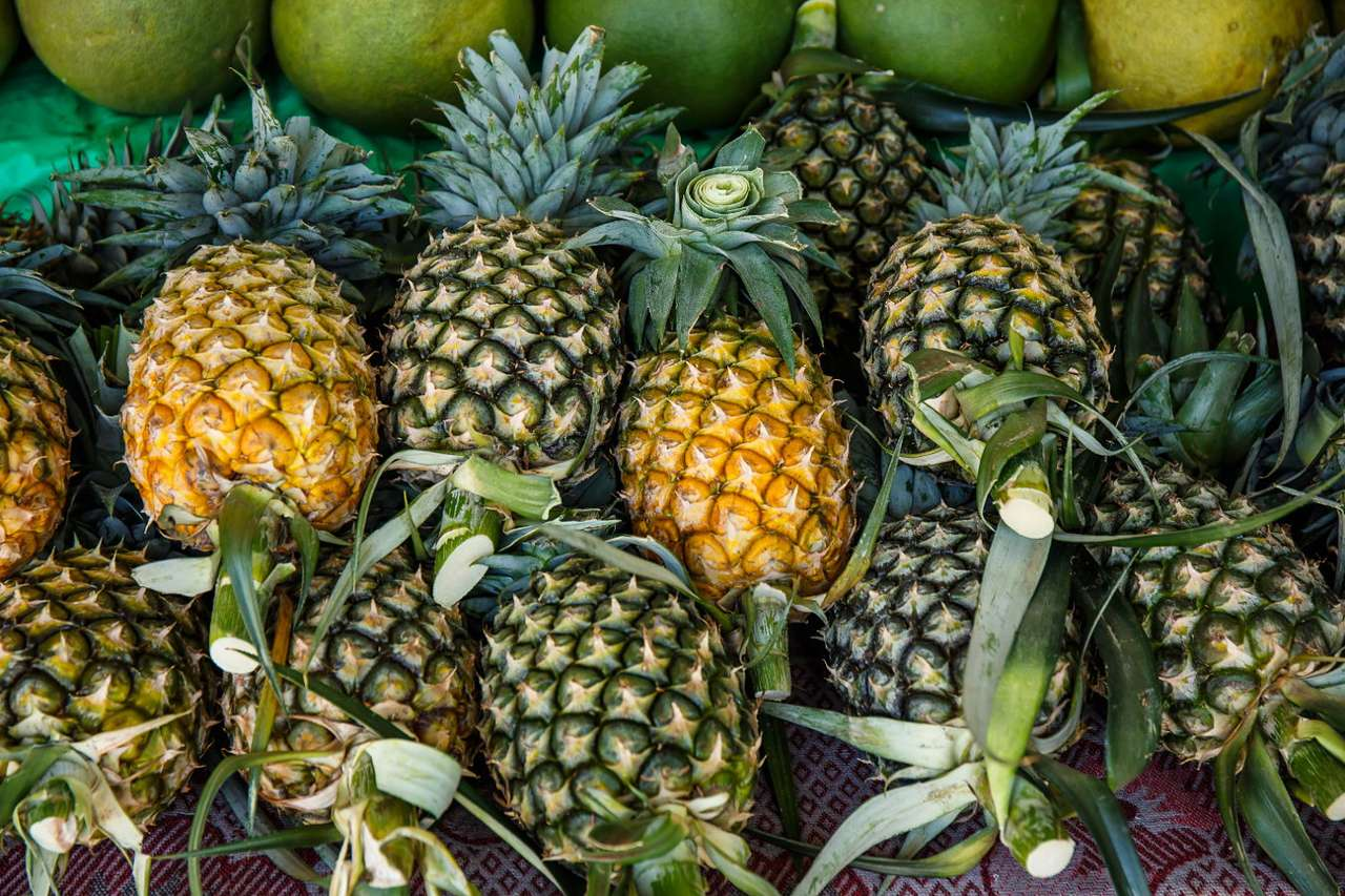 Pineapples - Pineapple is a plant native to South America. Its large infructescence covered with a hard shell is a popular delicacy that is widely used in various cuisines. Pineapples grow in Brazil in the wild, w (15×10)