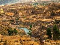 Colca Canyon (Peru)