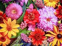 Multicolored composition with dahlias and gerberas