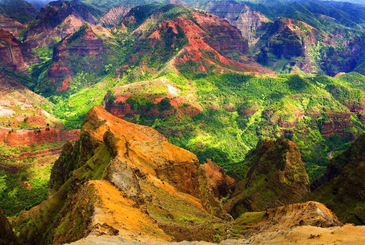 Green cliffs on the island of Kaua'i (USA)
