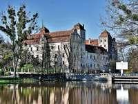 Castle in Niemodlin