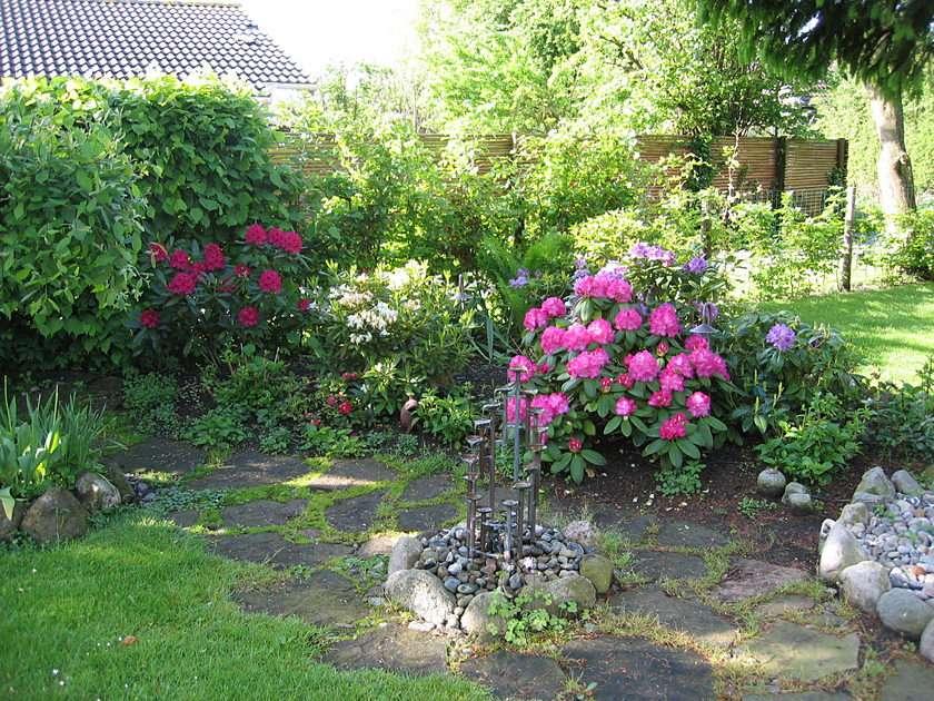 Grădina mea
