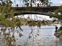 Puente de Triana (Spain)