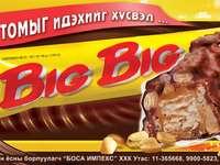 BOSA Big Big