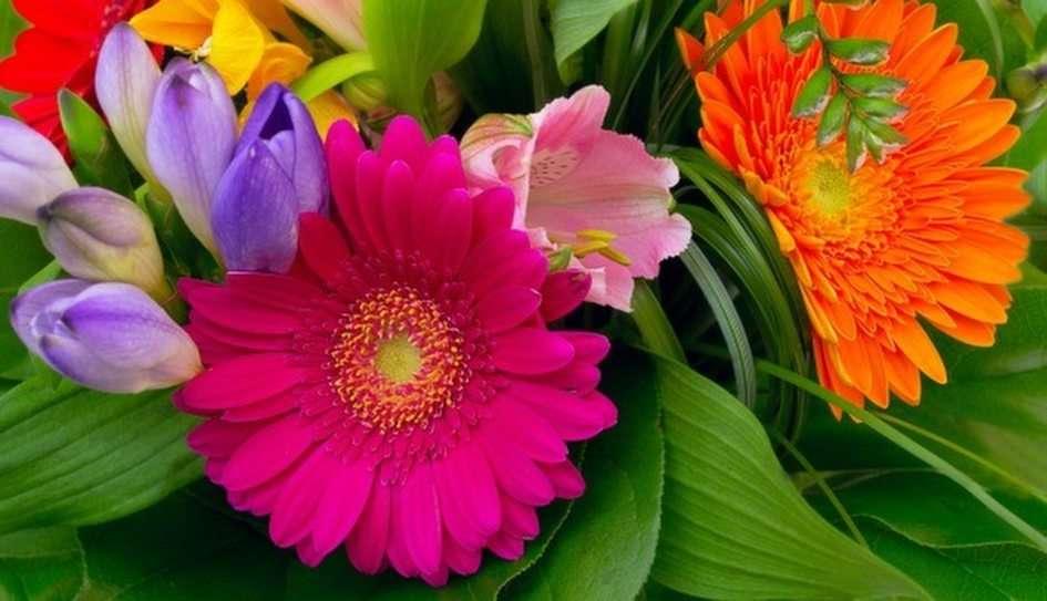 flowers -  (5×3)