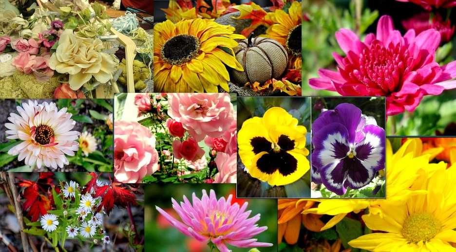 Bloemen collage online puzzle
