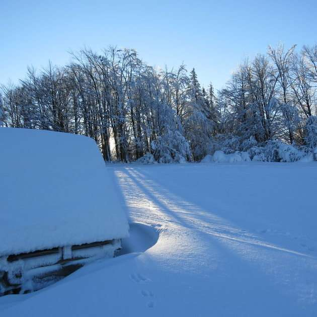 Voici à quoi ressemble la neige.