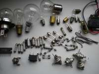 bulbs etc.