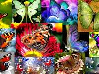 Fjärilar pussel från foto