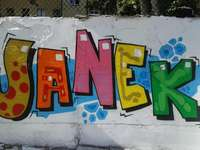 JANEK