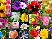 Blommig collage online pussel