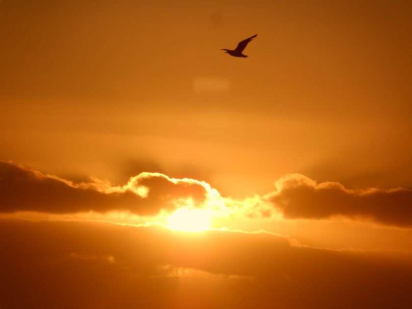Västkustens solnedgång pussel från foto