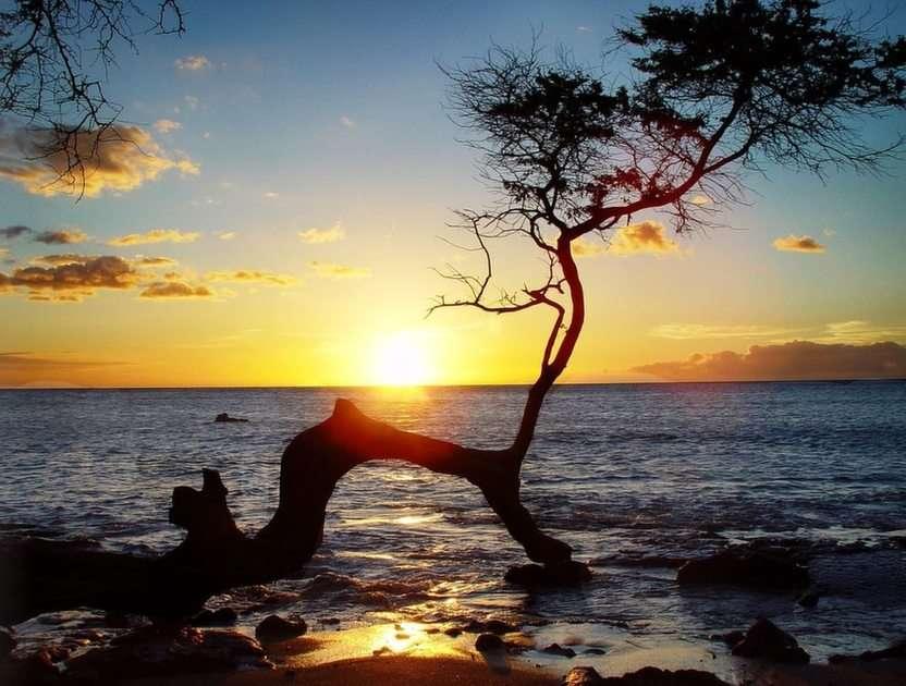 Peisajul apusului din Hawaii puzzle