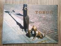 A souvenir from Toruń