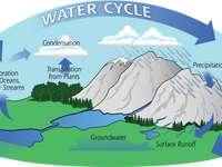 Sortarea ciclului de apă puzzle