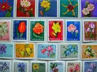 Znaczki kwiaty polskie1
