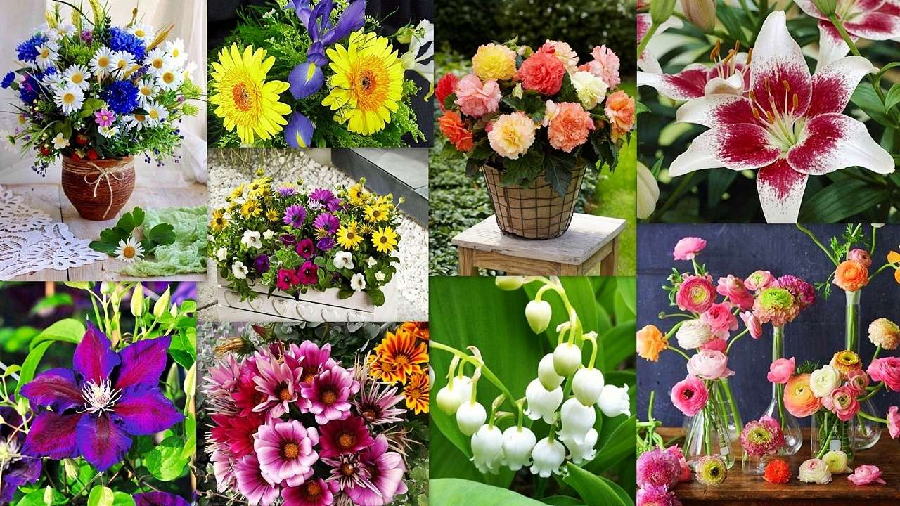A floral mix - A floral collage ... a feast for the eye and soul :) (19×11)