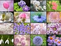 Floral again