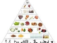 Τροφικη πυραμίδα