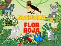 Manada Flor Roja