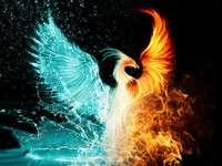 Phoenix Duality