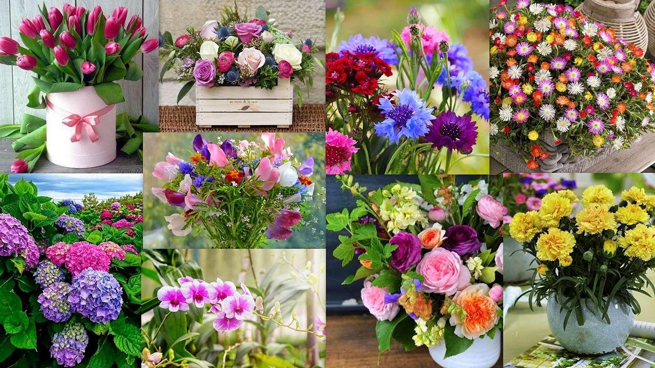 Mix floral - Uma colagem floral ... um banquete para os olhos e a alma :) (19×11)