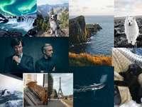 Ida collage bucketlist