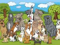 cartoondogs