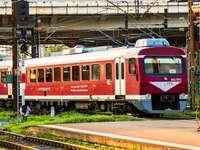 Vörös vonat