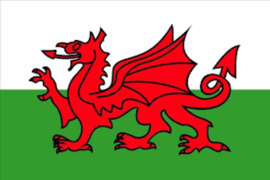 Steagul Welsh.