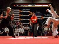 Δοκιμάστε το Karate Kid