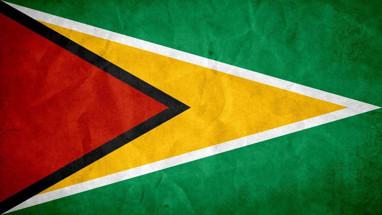 Guyana-Flagge-Puzzle.